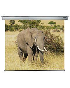 Ecran de proiectie manual Sopar Platinium, 220 x 200 cm