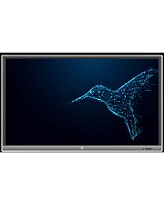 Monitor Interactiv Avtek Touchscreen 5 Lite 65 + OPS 4K Celeron