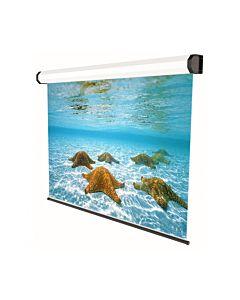 Ecran de proiectie electric SOPAR Professional 5281, 280cm x 210cm